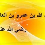 عبد الله بن عمرو بن العاص رضي الله عنه