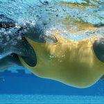 فوائد السباحة أثناء الحمل