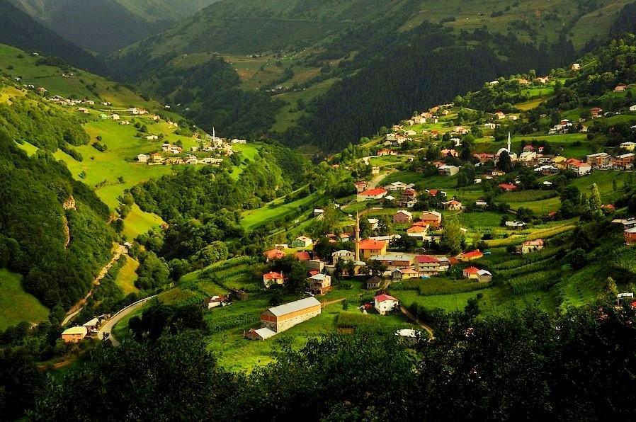 قرية حمصي كوي