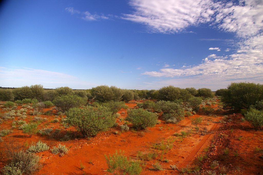 7. THE GREAT VICTORIA DESERT