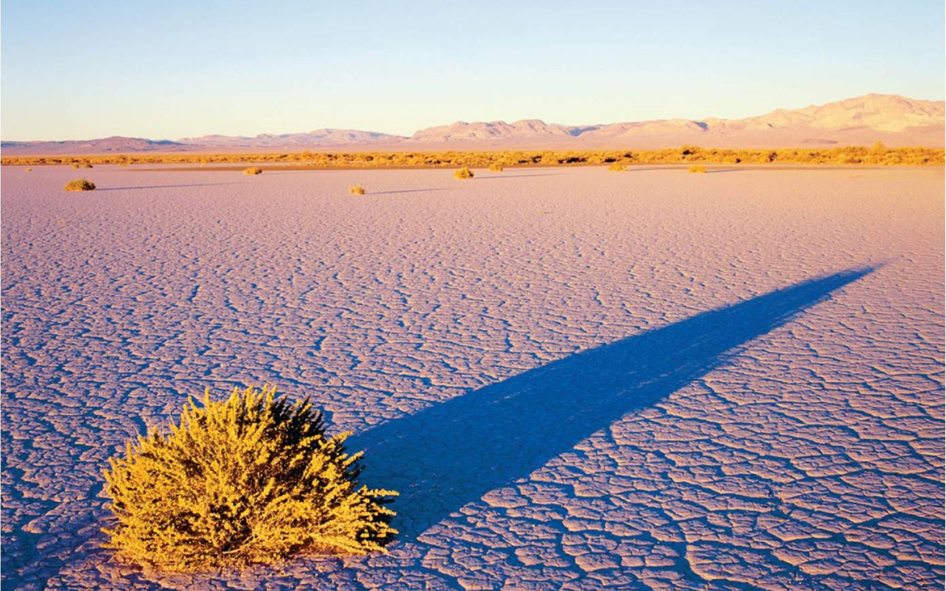 9. GREAT BASIN DESERT