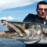 اكثر الحيوانات البحرية خطورة