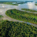 the Congo River - 350457