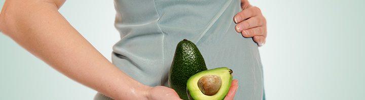 نتيجة بحث الصور عن صور الافوكادو والحمل