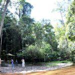 حديقة تلال لامبير الوطنية في ساراواك