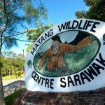 مركز الحياة البرية في ماتانج في ولاية ساراواك