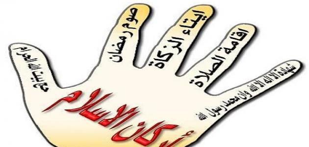 ما هي أركان الإسلام شرح 4