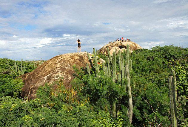 اشهر معالم جزيرة أروبا 3-Arikok-National-Pa