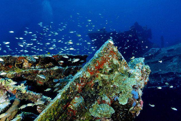 اشهر معالم جزيرة أروبا 7-Dive-Sites.jpg