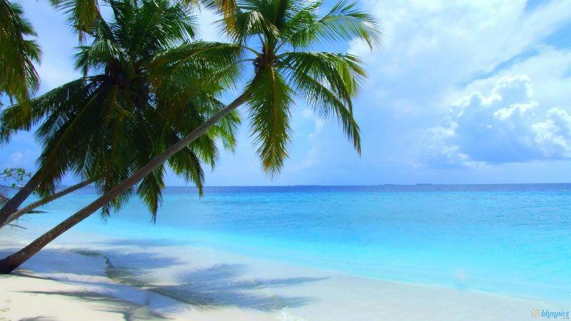 اجمل شواطئ العالم لعام 2016 Maldives-Beach.jpg