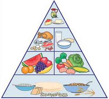 الهرم الغذائي للطفل المرسال