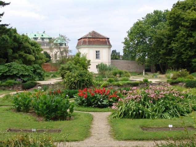 الحديقة النباتية التابعة للجامعة الفيينية