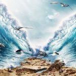ما هي معجزات النبي موسى عليه السلام ؟