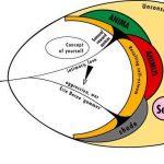 نظرية يونغ في التحليل النفسي