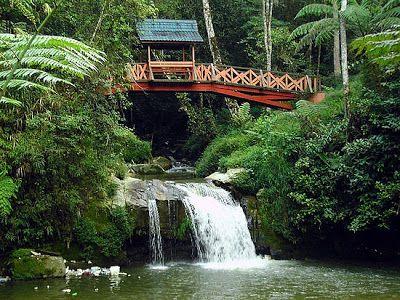 الانشطة السياحية كاميرون هايلاند بالصور Parit-waterfall-can-