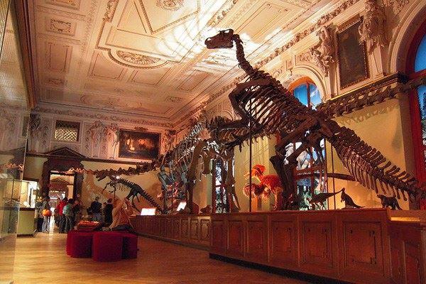 متحف التاريخ الطبيعي فيينا naturhistorisches-mu