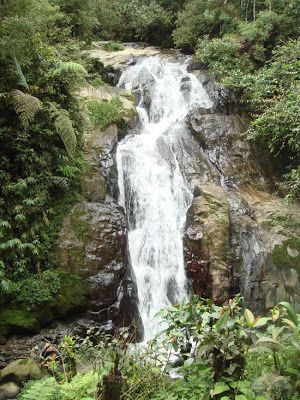 robinson waterfall