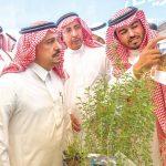 دراسة لاستزراع النباتات المحلية فى متنزه الثمامة