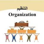 التنظيم الإداري و عناصره