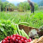 مفهوم التنمية الريفية و أهدافها