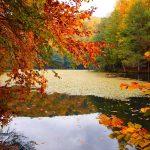 البحيرات السبعة المكان المفضل لقضاء العطلة الخريفية