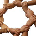 ما هي أهمية التضامن  ؟