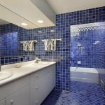 حمام بالالوان الزرقاء