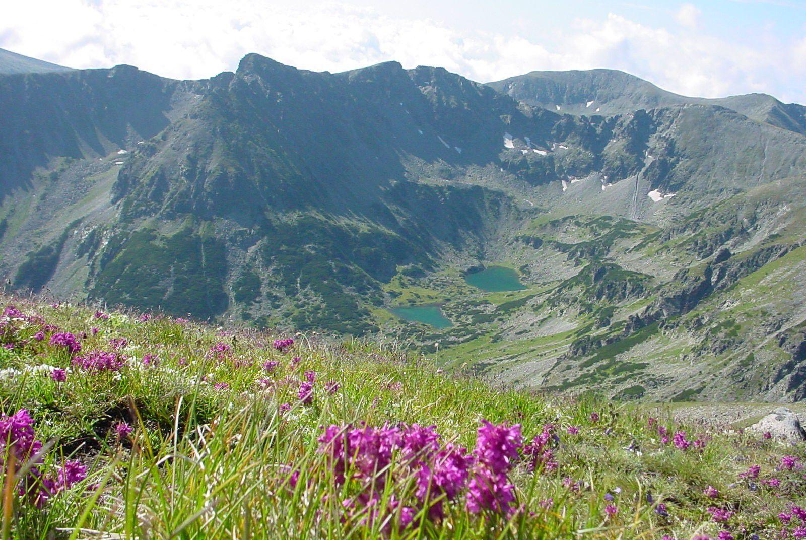 معلومات عن جبال ريلا  معلومات عن جبال ريلا  معلومات عن جبال ريلا
