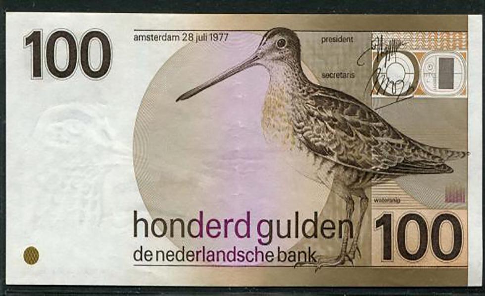 الجلدر الهولندي