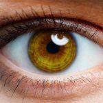 كيف يتم إكتشاف أمراض الكبد من خلال العين ؟