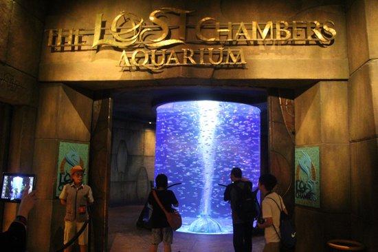 %e2%80%aathe-lost-chambers-aquarium