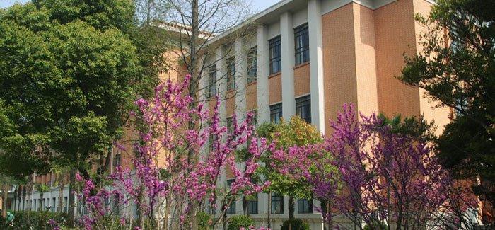 جامعة تونغجي