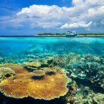 جزر جيلي - 436054