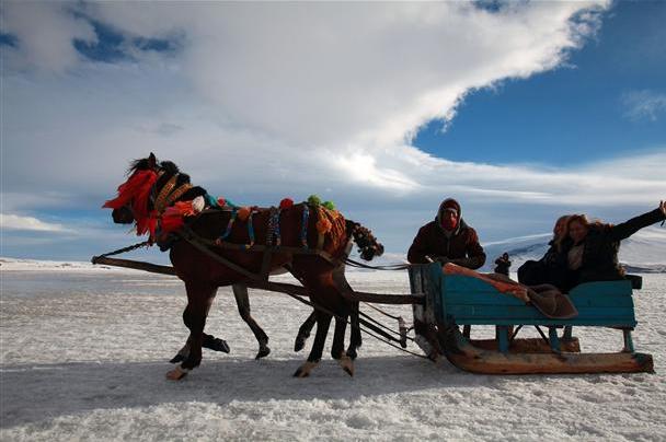 عربات الجليد