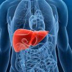 أضرار مكملات البروتين على وظائف الكبد