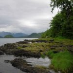 10-tongass-national-forest-alaska - 433514