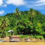 Kalimantan, Borneo - 436061