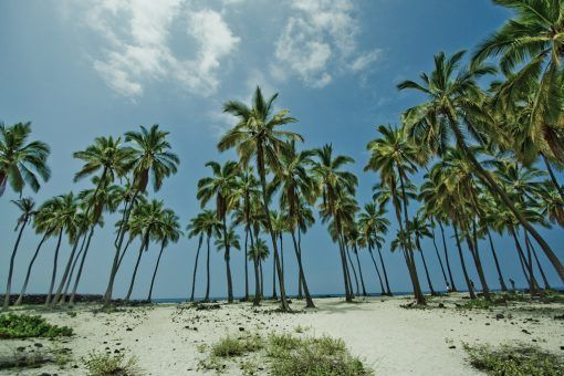 جزيرة خاصة