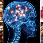أفضل الأطعمة والمكونات الطبيعية لتحسين الذاكرة