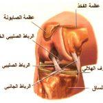 طرق علاج اصابات الرباط الصليبي