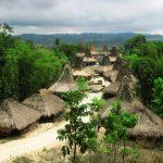 "سبع جزر غريبة في نوسا تينجارا "" Nusa Tenggara"""
