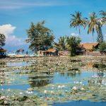 فنادق التأمل والاسترخاء في جزيرة بالي