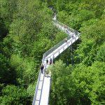 دليل الحدائق الوطنية في ألمانيا
