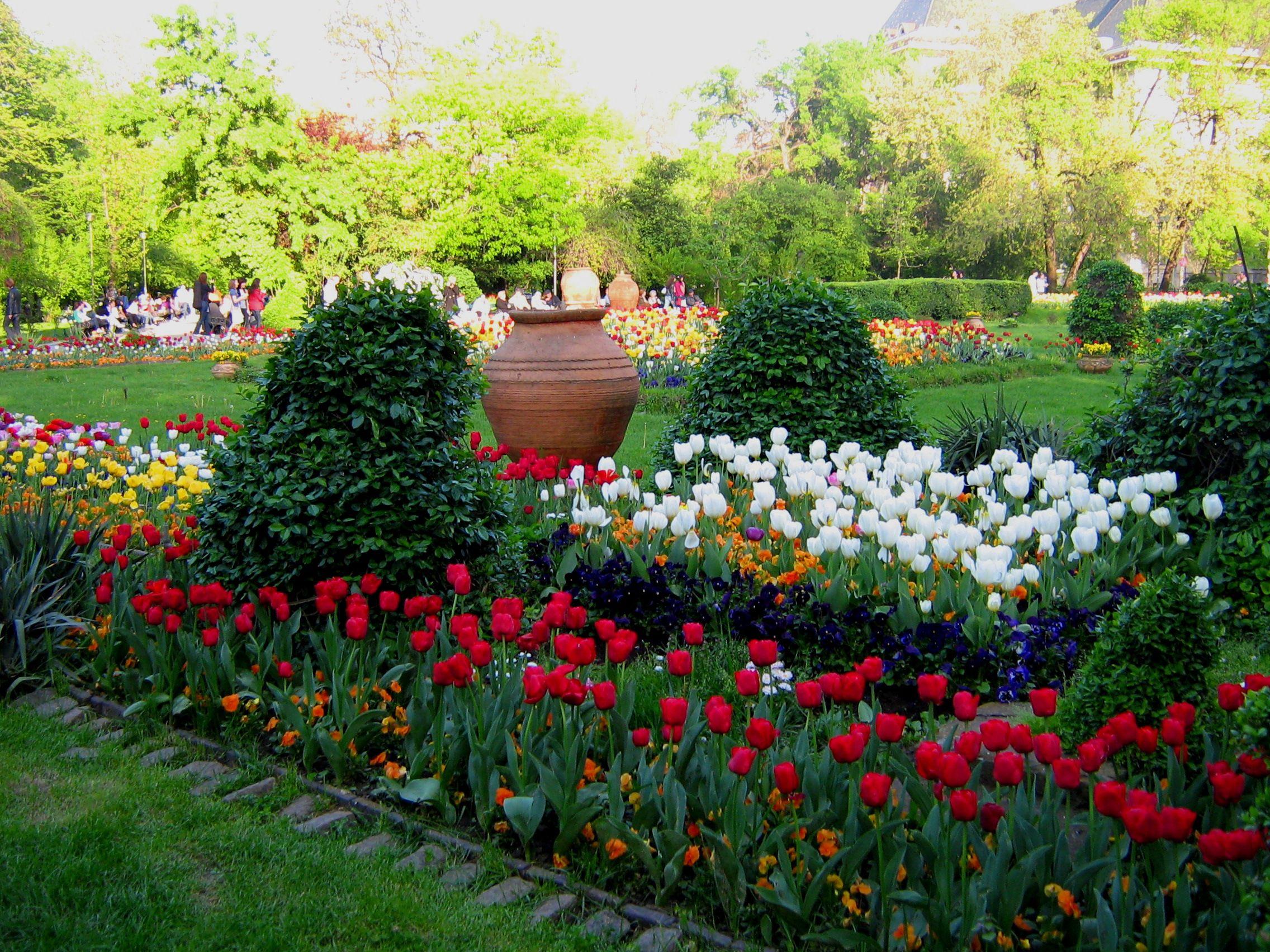 حديقة تشميجيو Cismigiu-Park-Buchar