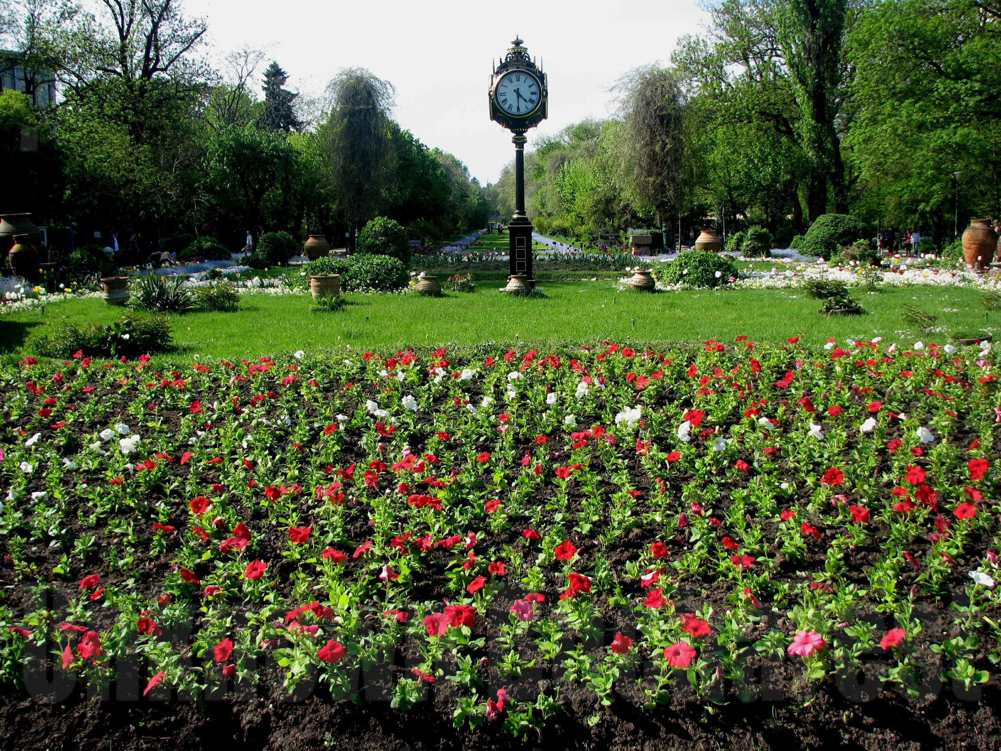 حديقة تشميجيو Cismigiu-Park-the-ol