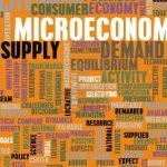 الإقتصاد الجزئي Microeconomic