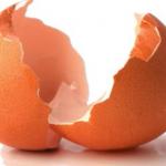 استخدامات مذهلة لقشر البيض في المنزل