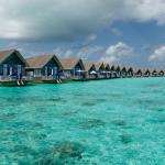 فوائد ماء البحر للحساسية