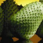 كنز من الفوائد في فاكهة القشطة