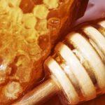 الغذاء الخارق ملكات النحل Royal Jelly